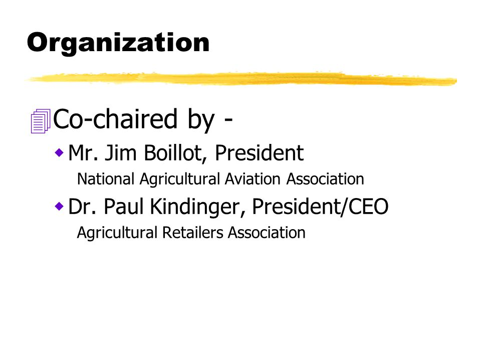 Organization 4Co-chaired by -  Mr.