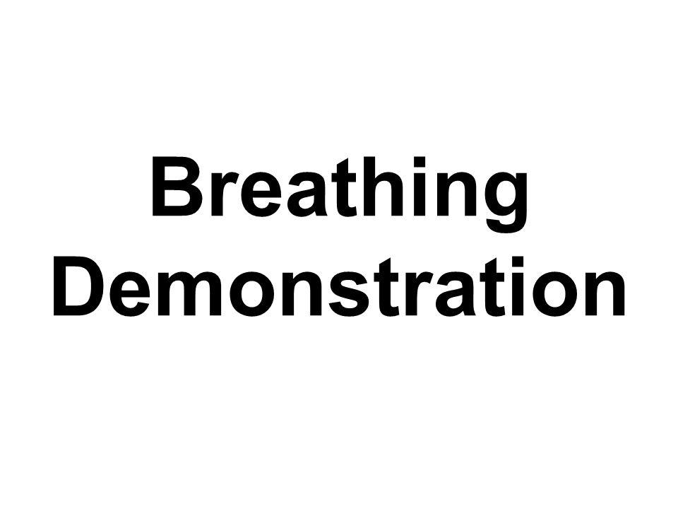 Breathing Demonstration