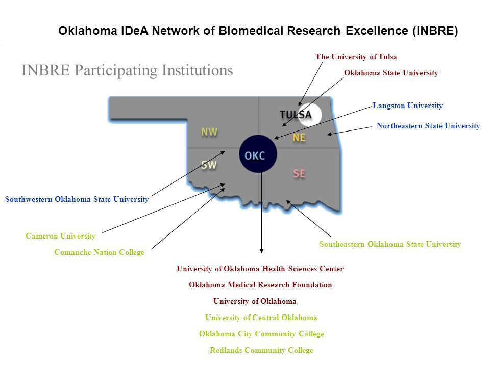 The University of Tulsa University of Oklahoma Health Sciences Center Oklahoma Medical Research Foundation Oklahoma State University University of Oklahoma Northeastern State University Southwestern Oklahoma State University Langston University University of Central Oklahoma Cameron University Southeastern Oklahoma State University INBRE Participating Institutions Comanche Nation College Oklahoma City Community College Redlands Community College Oklahoma IDeA Network of Biomedical Research Excellence (INBRE)