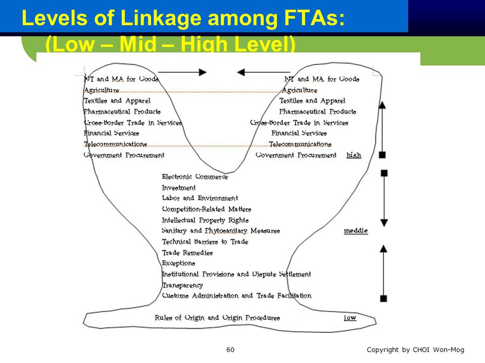 Levels of Linkage among FTAs: (Low – Mid – High Level) Copyright by CHOI Won-Mog60