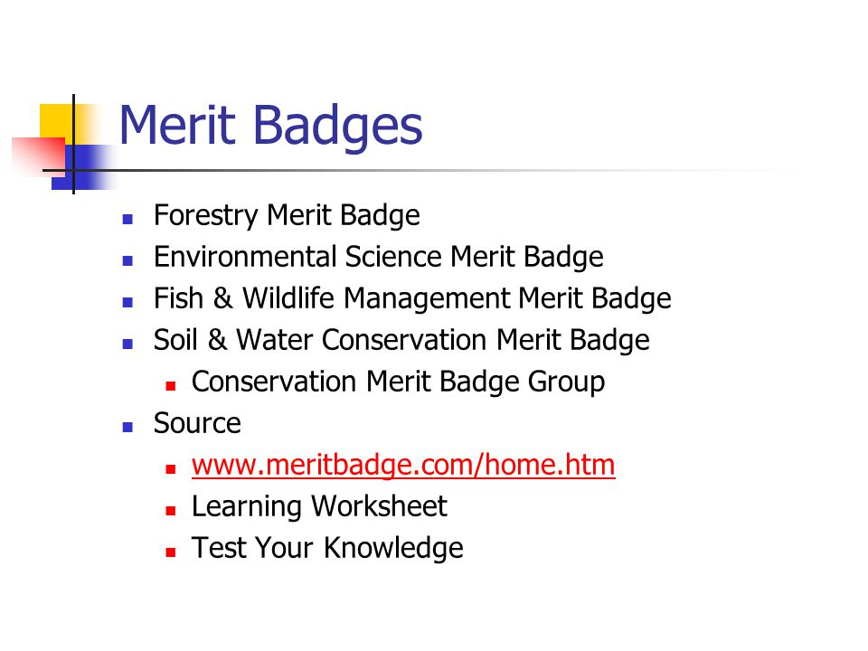 Forestry Merit Badge Environmental Science Merit Badge Fish & Wildlife Management Merit Badge Soil & Water Conservation Merit Badge Conservation Merit Badge Group Source www.meritbadge.com/home.htm Learning Worksheet Test Your Knowledge
