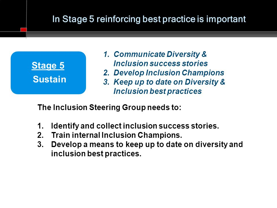 In Stage 5 reinforcing best practice is important The Inclusion Steering Group needs to: 1.Identify and collect inclusion success stories.
