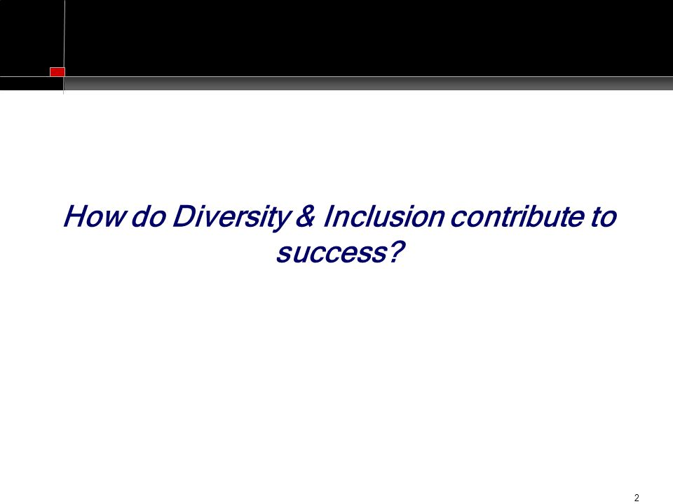 2 How do Diversity & Inclusion contribute to success