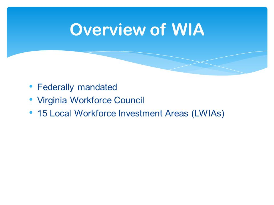 Federally mandated Virginia Workforce Council 15 Local Workforce Investment Areas (LWIAs) Overview of WIA
