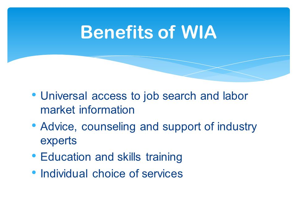 Universal access to job search and labor market information Advice, counseling and support of industry experts Education and skills training Individual choice of services Benefits of WIA