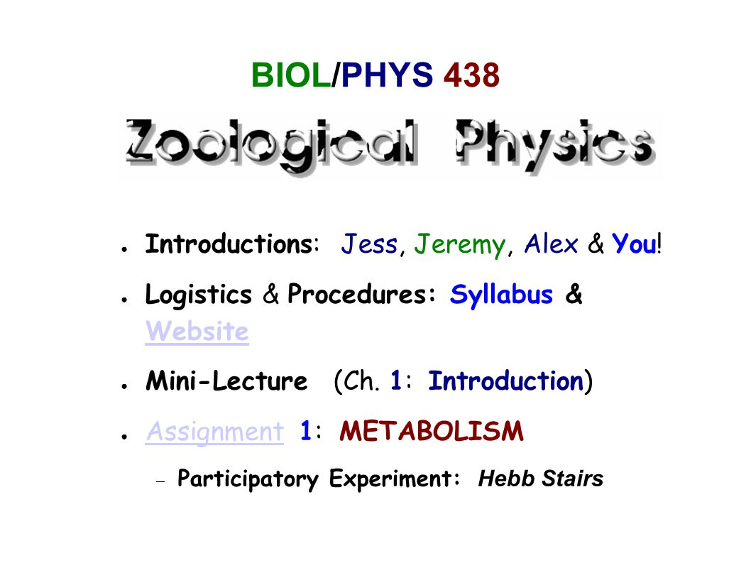 PEOPLE ● Jess Brewer (  Boye Ahlborn)  Henn 320A, 2-6455, jess@physics.ubc.cajess@physics.ubc.ca ● Jeremy Goldbogen (  John Gosline)  Biosci 3475, 2-2373, jergold@zoology.ubc.cajergold@zoology.ubc.ca ● Alex Weber (TA)  AMPEL 143, 2-5244, aweber@physics.ubc.caaweber@physics.ubc.ca ● You (See Assignment 1):  Please Email us a brief explanation of who you are and why you are taking BIOL/PHYS 438!Email us