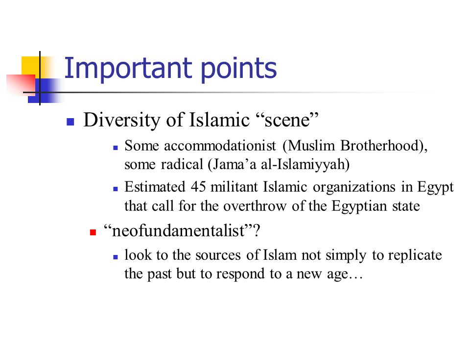 Important points Diversity of Islamic scene Some accommodationist (Muslim Brotherhood), some radical (Jama'a al-Islamiyyah) Estimated 45 militant Islamic organizations in Egypt that call for the overthrow of the Egyptian state neofundamentalist .