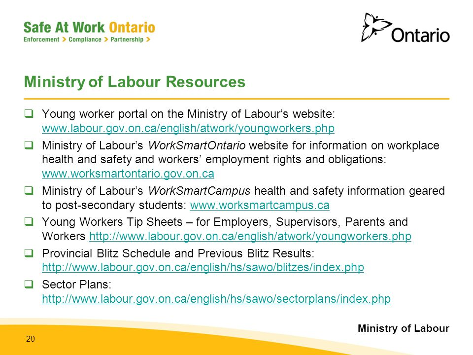 Ministry of Labour 20 Ministry of Labour Resources  Young worker portal on the Ministry of Labour's website: www.labour.gov.on.ca/english/atwork/youn