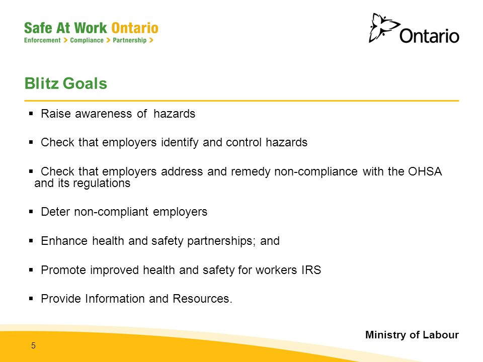 Ministry of Labour 5 Blitz Goals  Raise awareness of hazards  Check that employers identify and control hazards  Check that employers address and r
