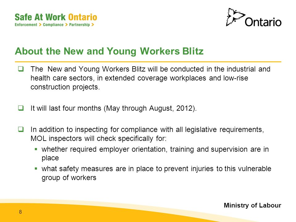 Ministry of Labour 19 Summary of the New and Young Workers Blitz  Ministry of Labour (MOL) inspectors will carry out the Blitz regarding New and Young Workers, through workplace inspections that occur between May 1 st and August 31 st, 2012 in order to:  ensure compliance with the OHSA and its regulations  MOL Inspectors will be using enforcement tools (i.e.