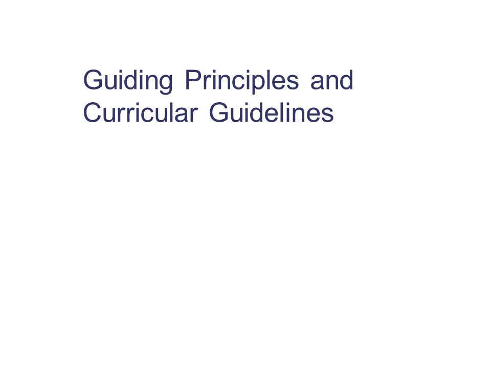 Guiding Principles and Curricular Guidelines
