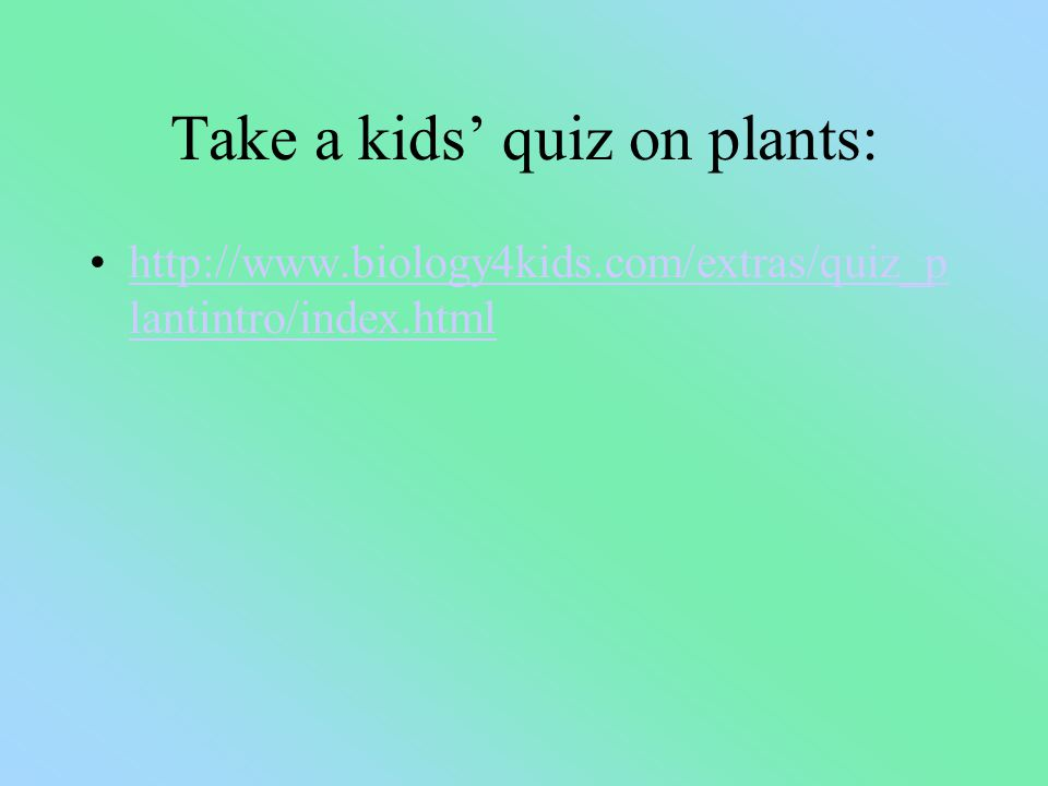 Take a kids' quiz on plants: http://www.biology4kids.com/extras/quiz_p lantintro/index.htmlhttp://www.biology4kids.com/extras/quiz_p lantintro/index.html