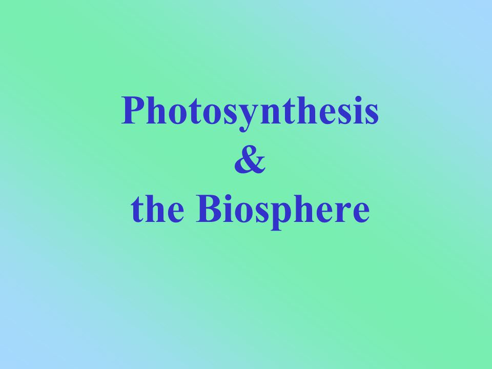 Photosynthesis & the Biosphere