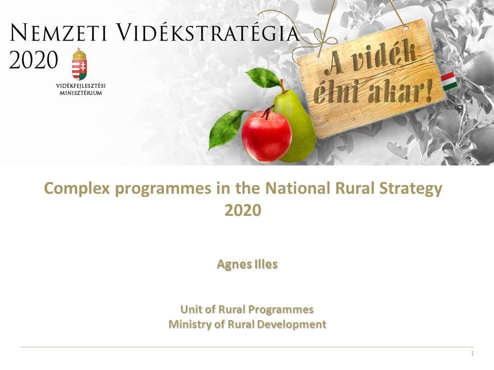1 Complex programmes in the National Rural Strategy 2020 Agnes Illes Unit of Rural Programmes Ministry of Rural Development