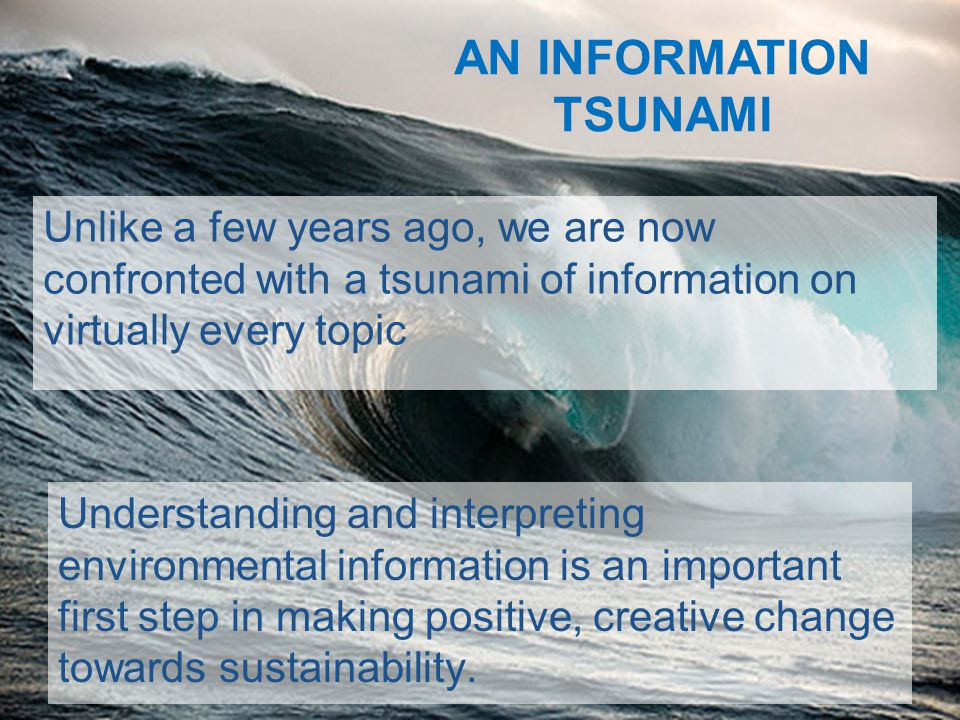 Understanding and interpreting environmental information is an important first step in making positive, creative change towards sustainability.