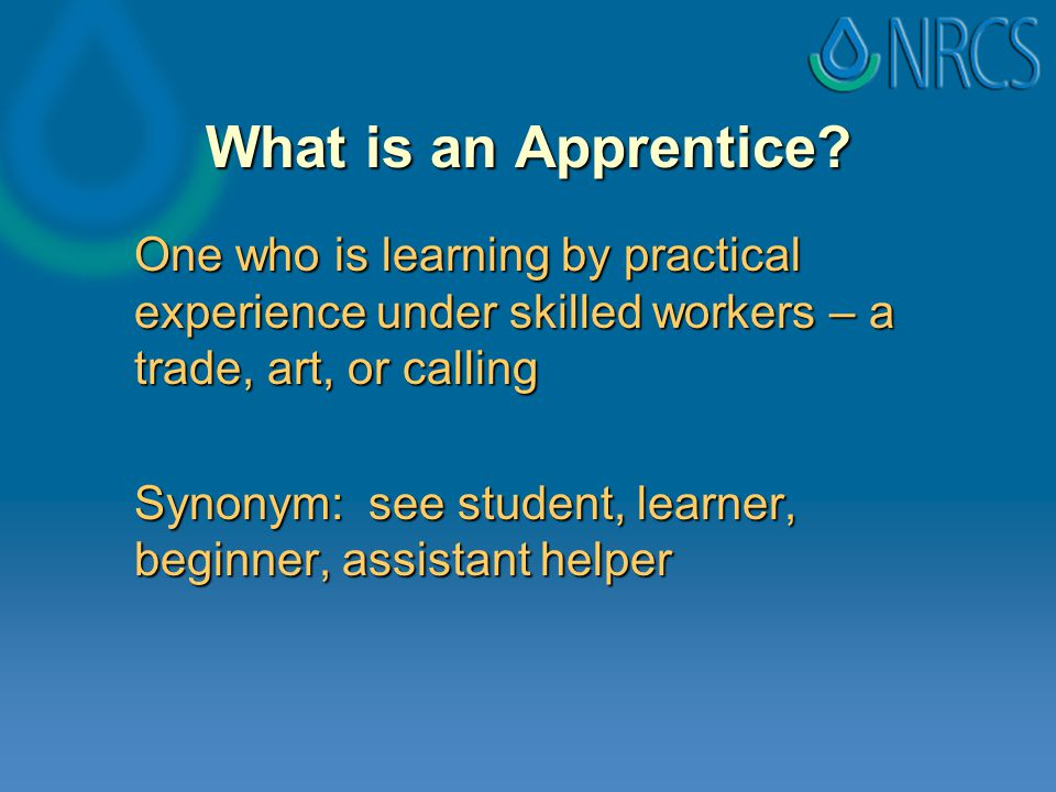 What is an Apprentice.