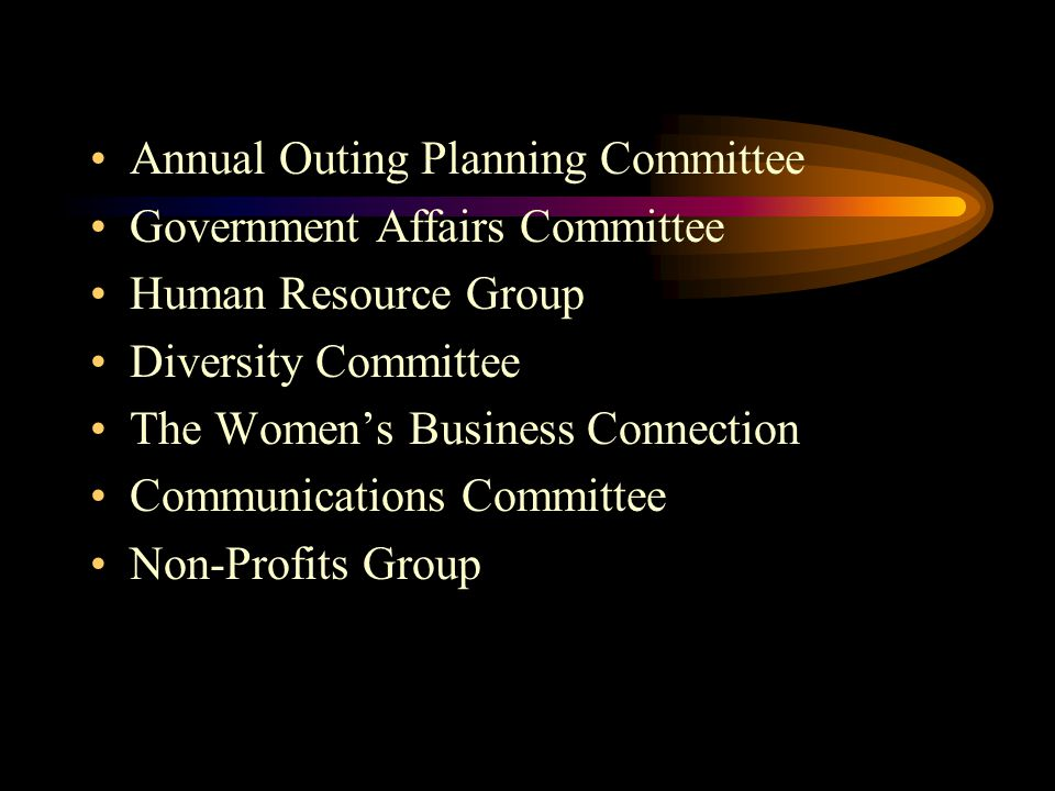 Annual Outing Planning Committee Government Affairs Committee Human Resource Group Diversity Committee The Women's Business Connection Communications Committee Non-Profits Group