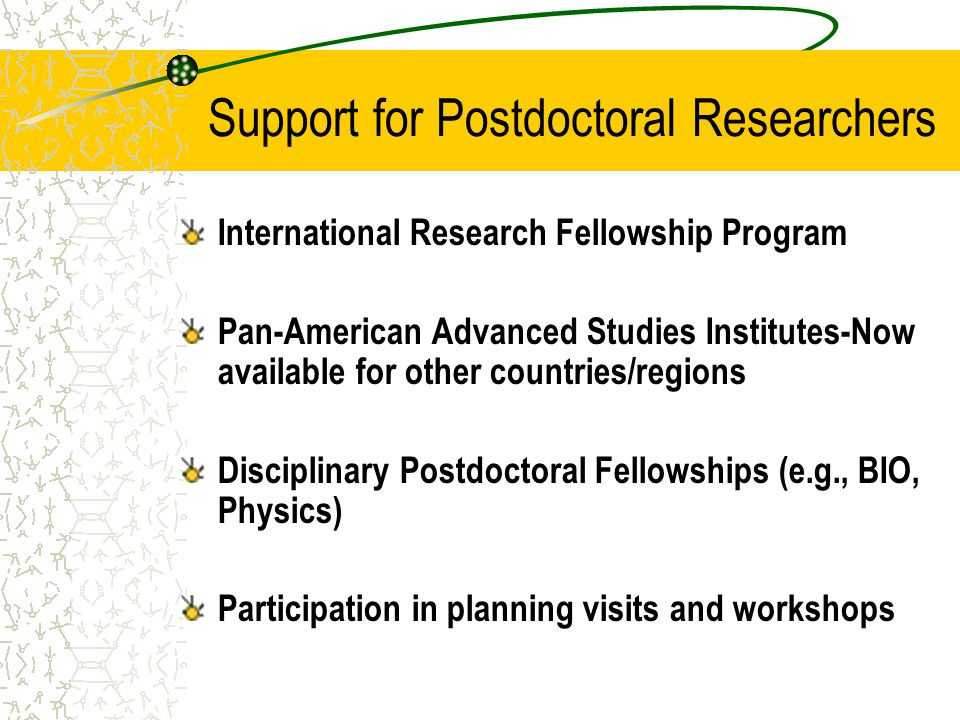 Support for Postdoctoral Researchers International Research Fellowship Program Pan-American Advanced Studies Institutes-Now available for other countries/regions Disciplinary Postdoctoral Fellowships (e.g., BIO, Physics) Participation in planning visits and workshops
