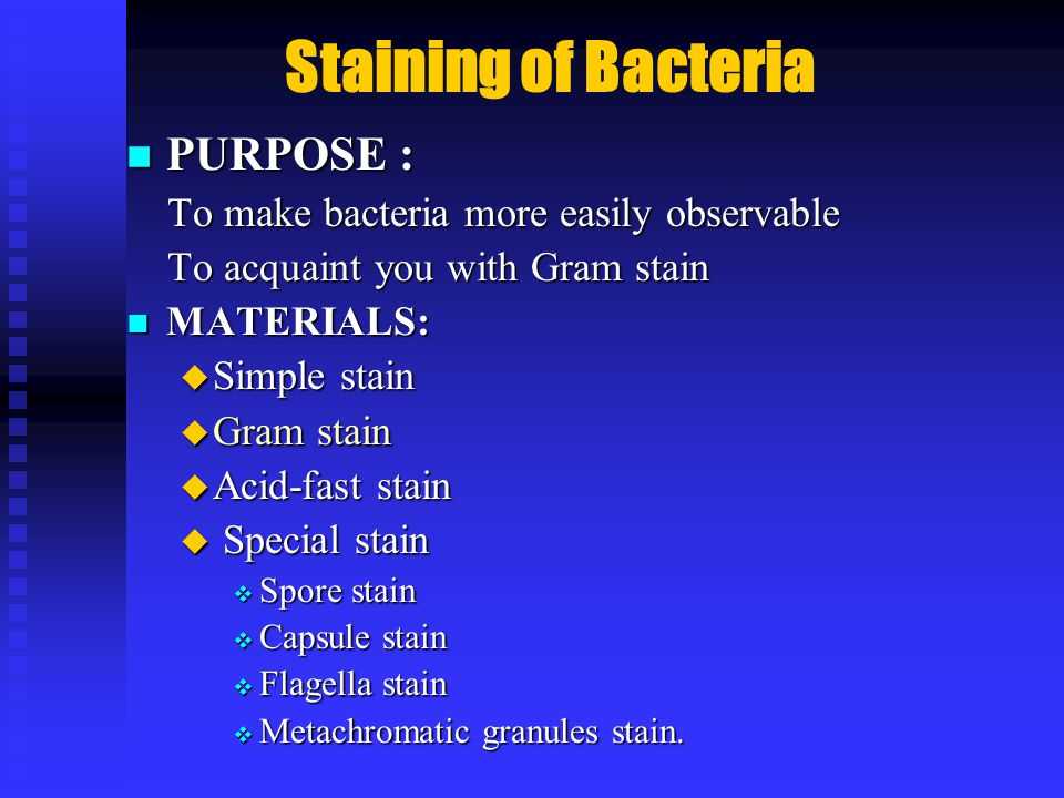 Staining of Bacteria PURPOSE : PURPOSE : To make bacteria more easily observable To make bacteria more easily observable To acquaint you with Gram stain To acquaint you with Gram stain MATERIALS: MATERIALS:  Simple stain  Gram stain  Acid-fast stain  Special stain  Spore stain  Capsule stain  Flagella stain  Metachromatic granules stain.