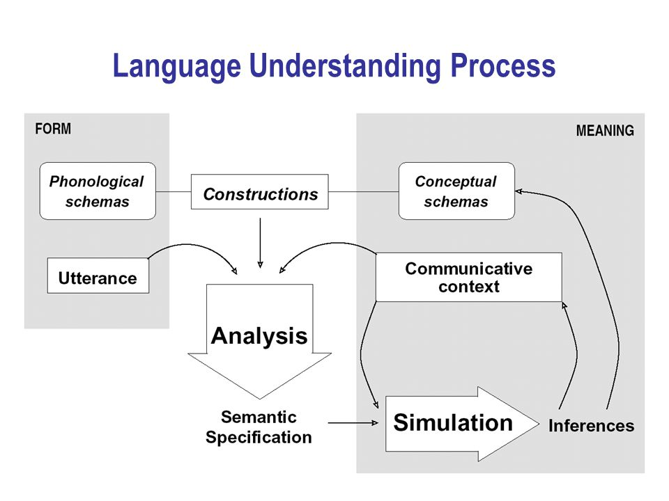 Language Understanding Process
