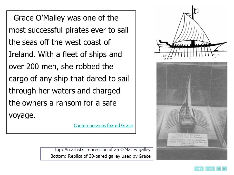 ENDHOME Grace O'Malley was one of the most successful pirates ever to sail the seas off the west coast of Ireland. With a fleet of ships and over 200