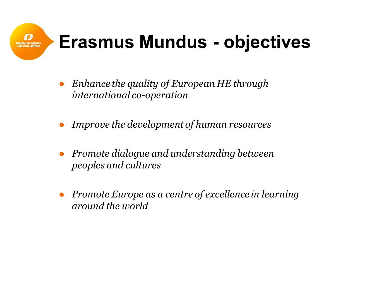 Erasmus Mundus - what does it offer.