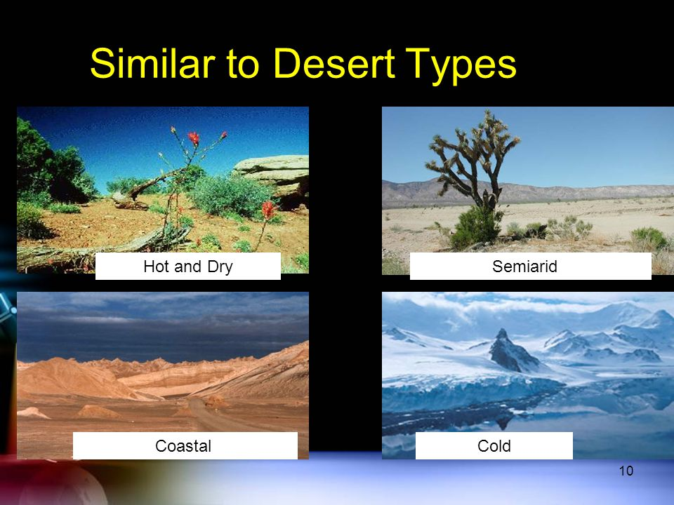Similar to Desert Types Hot and Dry Semiarid CoastalCold 10