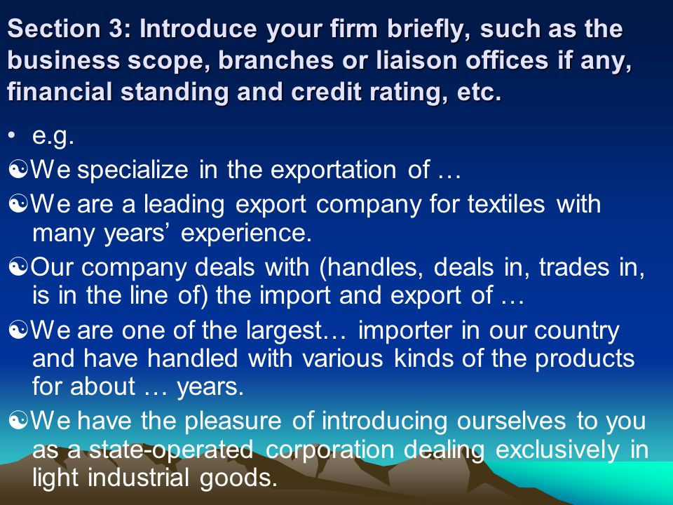 Section 3: Introduce your firm briefly, such as the business scope, branches or liaison offices if any, financial standing and credit rating, etc.