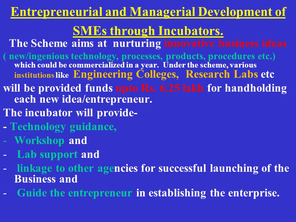 Entrepreneurial and Managerial Development of SMEs through Incubators.