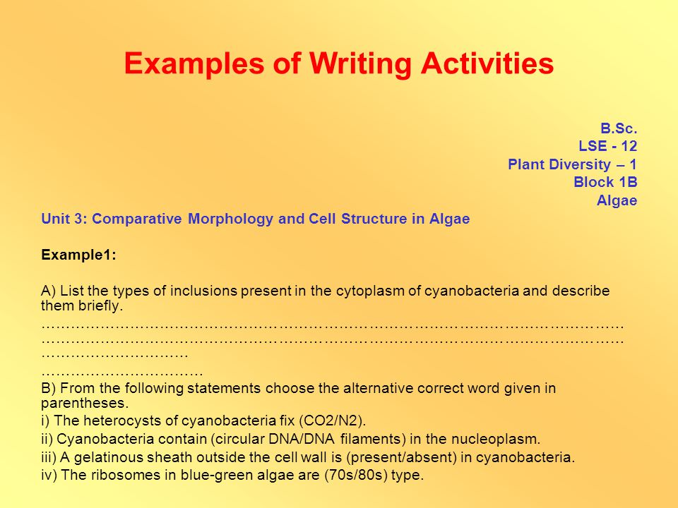 Examples of Thinking Activities M.A.