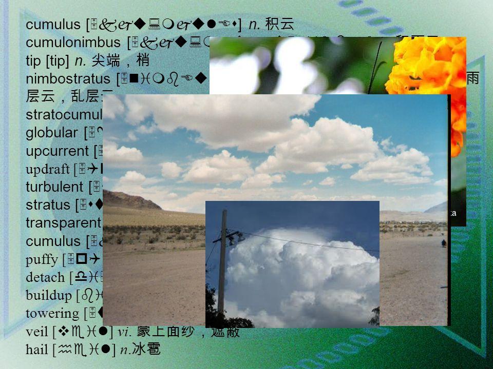 cumulus [5kju:mjulEs] n. 积云 cumulonimbus [5kju:mjulEu5nimbEs] n.
