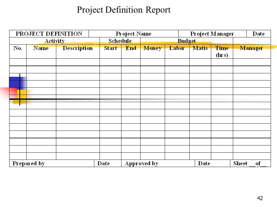 42 Project Definition Report