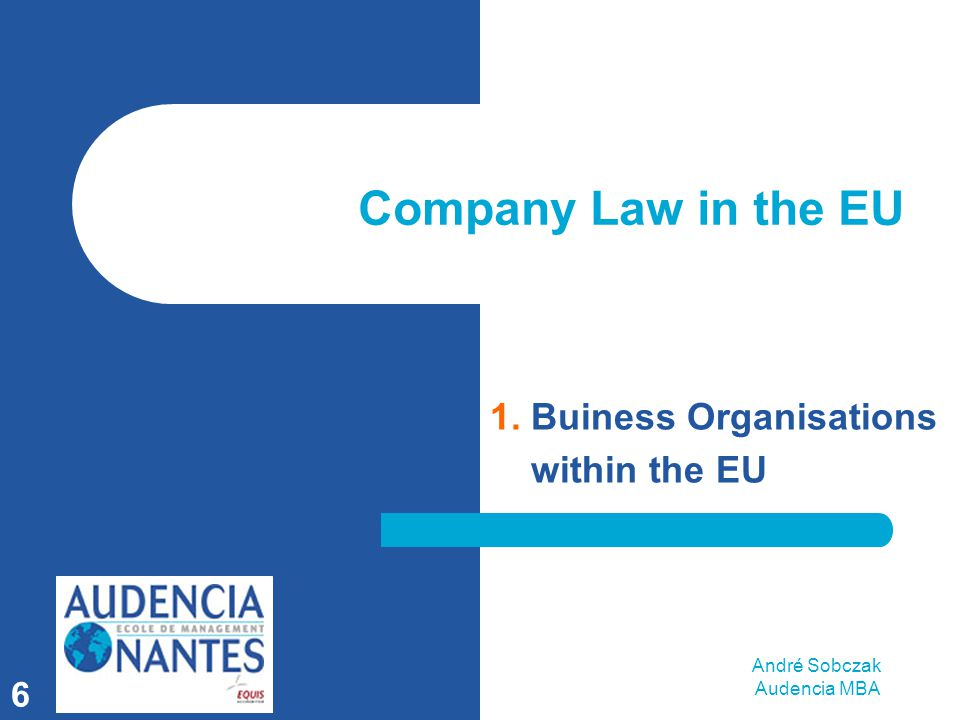 André Sobczak Audencia MBA 6 Company Law in the EU 1. Buiness Organisations within the EU