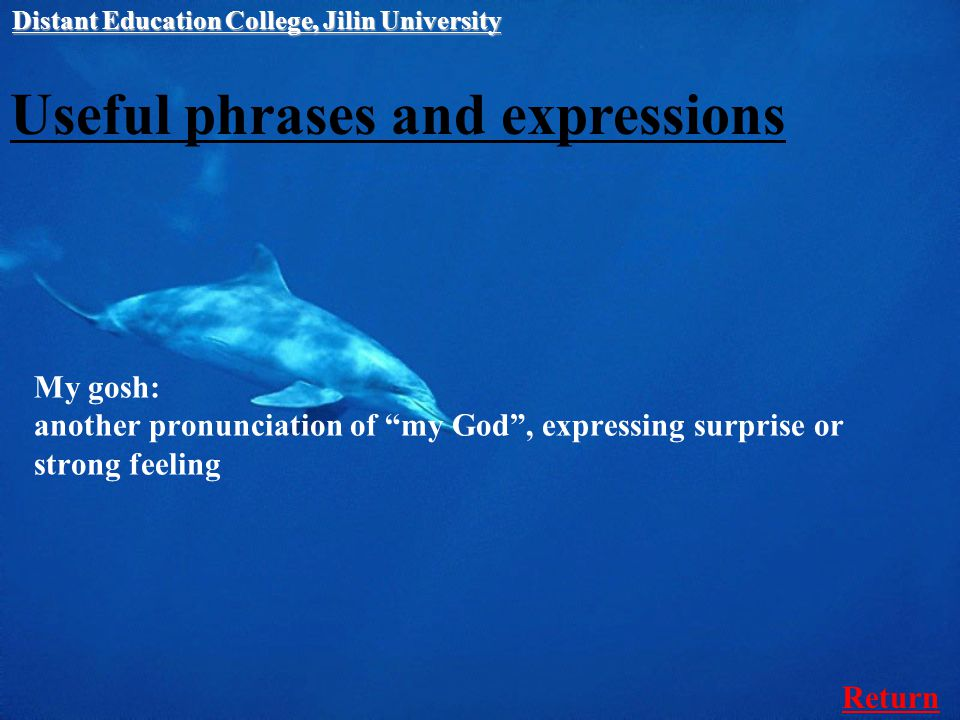Useful phrases and expressions My gosh: another pronunciation of my God , expressing surprise or strong feeling Distant Education College, Jilin University Return