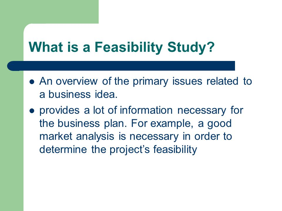 What is a Feasibility Study. An overview of the primary issues related to a business idea.