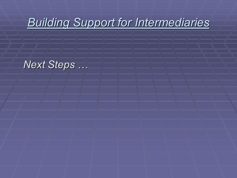 Building Support for Intermediaries Next Steps …