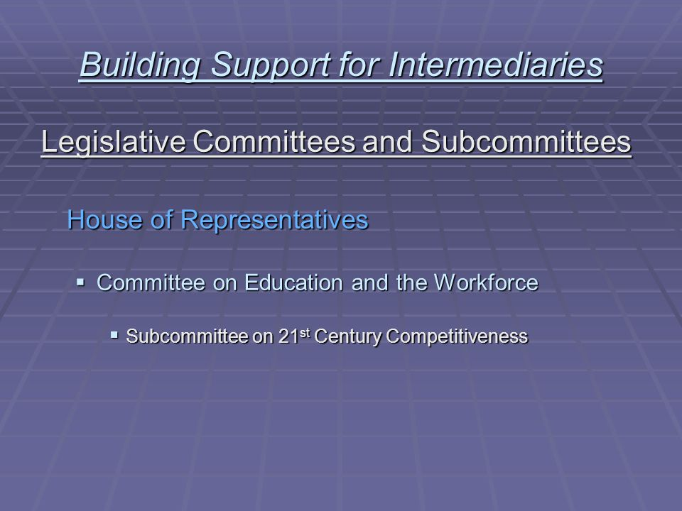 Building Support for Intermediaries Legislative Committees and Subcommittees 21 st Century Competitiveness Subcommittee  McKeon, Chair (CA)Mink, Ranking (HI)  Isakson (GA)Tierney (MA)  Castle (DE)Kind (WI)  Johnson (TX)Holt (NJ  Graham (SC)Wu (OR)  Souder (IN)Rivers (MI)  Upton (MI)McCollum (MN)  Ehlers (MI)Andrews (NJ)  Goodlatte (VA)Hinojosa (TX)  Osborne (NE)