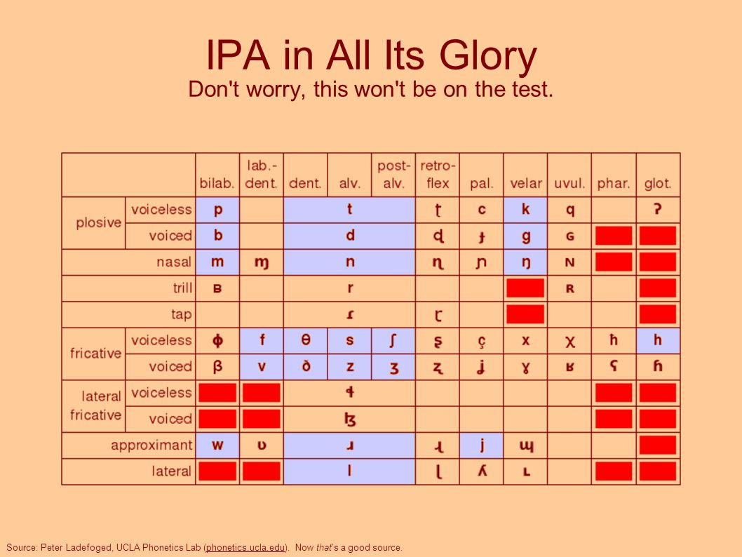 IPA in All Its Glory Don t worry, this won t be on the test.