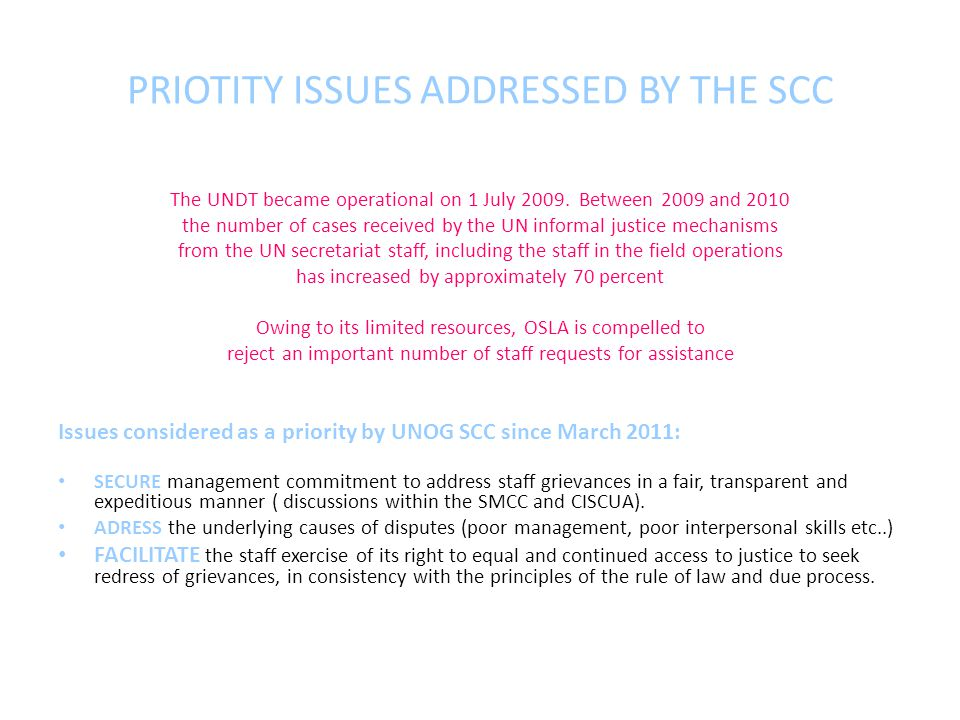 PRIOTITY ISSUES ADDRESSED BY THE SCC The UNDT became operational on 1 July 2009.