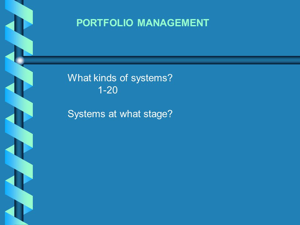 PORTFOLIO MANAGEMENT What kinds of systems? 1-20 Systems at what stage?