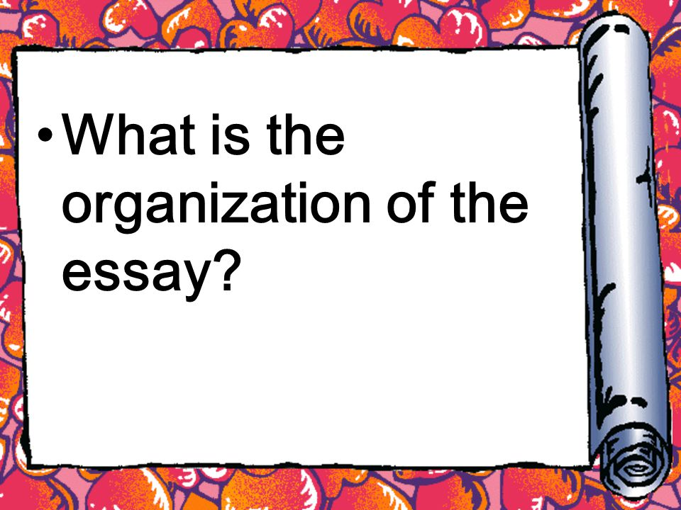 What is the organization of the essay
