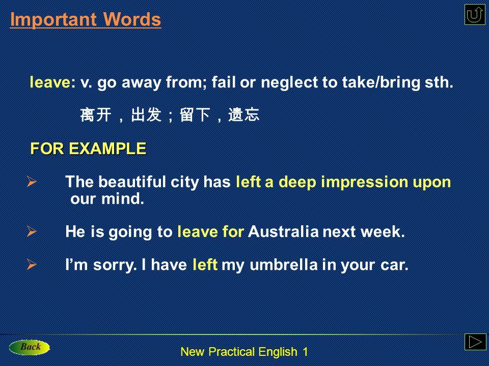 New Practical English 1 wave: v.