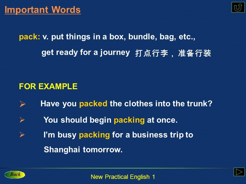 New Practical English 1 organize : v.