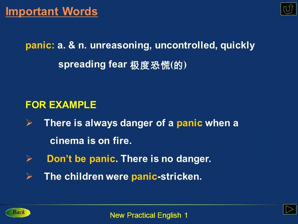 New Practical English 1 control: v. & n.