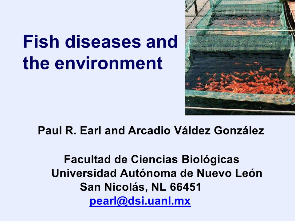 Fish diseases and the environment Paul R.