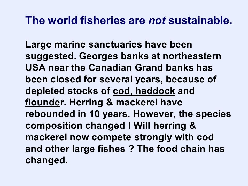 The world fisheries are not sustainable. Large marine sanctuaries have been suggested.