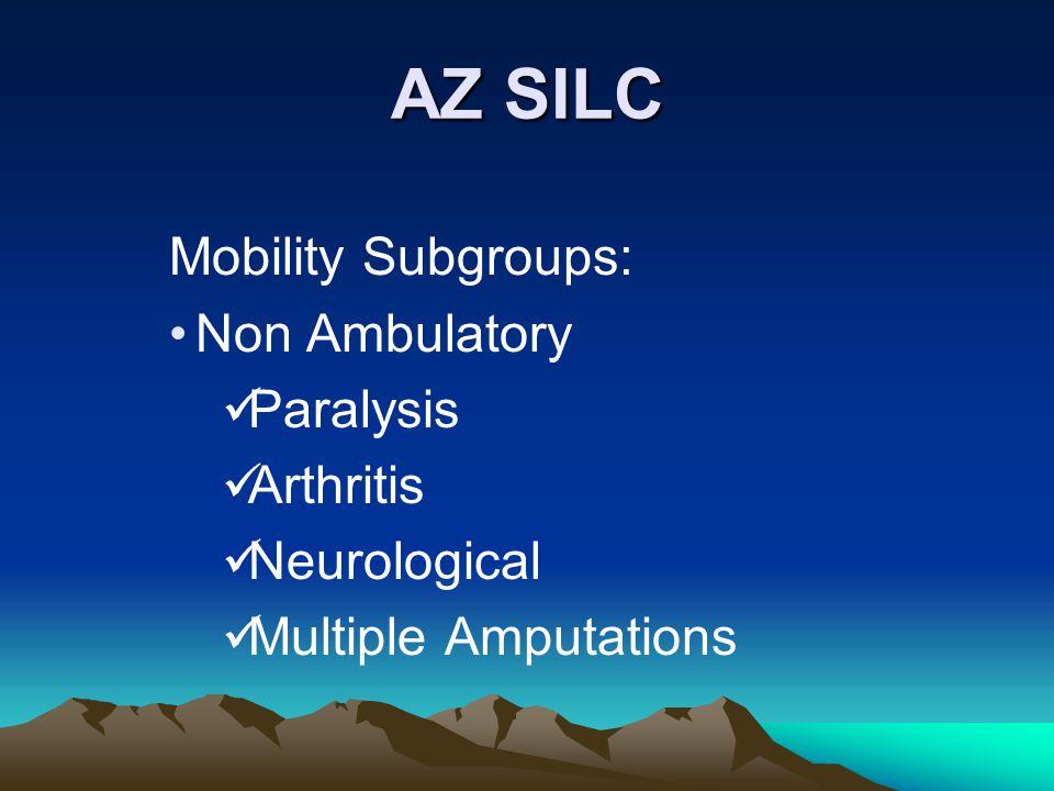 AZ SILC Mobility Subgroups: Non Ambulatory Paralysis Arthritis Neurological Multiple Amputations