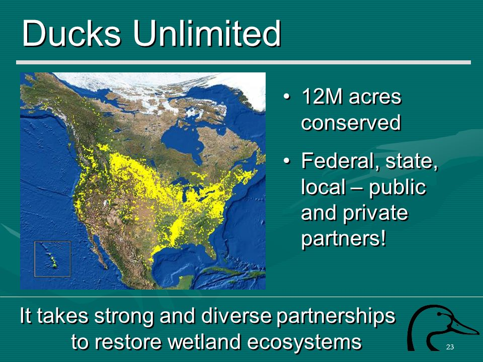 23 Ducks Unlimited It takes strong and diverse partnerships to restore wetland ecosystems 12M acres conserved Federal, state, local – public and priva