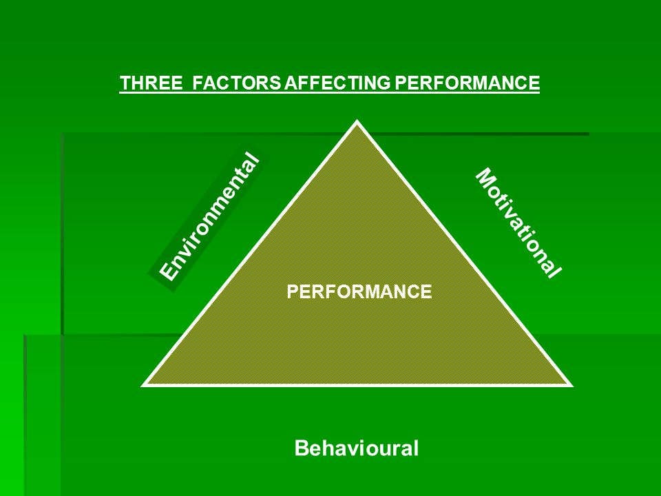 PERFORMANCE Environmental Motivational Behavioural THREE FACTORS AFFECTING PERFORMANCE