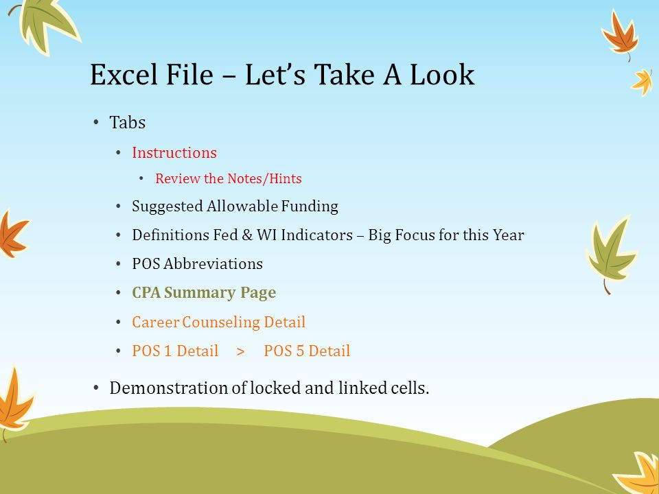 Excel File – Let's Take A Look Tabs Instructions Review the Notes/Hints Suggested Allowable Funding Definitions Fed & WI Indicators – Big Focus for this Year POS Abbreviations CPA Summary Page Career Counseling Detail POS 1 Detail > POS 5 Detail Demonstration of locked and linked cells.
